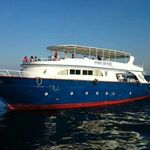 @shehab_boat_diving_hurghada's profile picture on influence.co