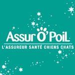 @assuropoil's profile picture
