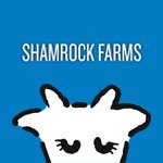 @shamrockfarmsmilk's profile picture on influence.co