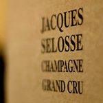 @domainejacquesselosse's profile picture