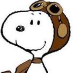 @da_beltran81's profile picture on influence.co