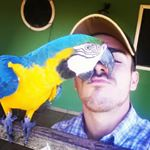 @leolorentz's profile picture on influence.co