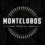 @montelobos's profile picture