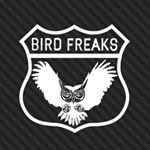 @birdfreaks's profile picture on influence.co