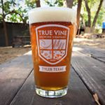 @truevinebrewing's profile picture on influence.co