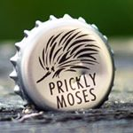 @pricklymoses's profile picture on influence.co