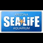 @sealifearizona's profile picture