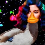 @marinaandthefabducks's profile picture on influence.co