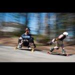 @zenit.boards's profile picture