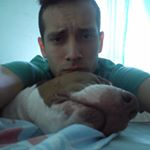 @senko_em's profile picture on influence.co