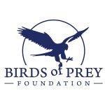 @birdsofpreyco's profile picture on influence.co