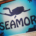 @seamor_diving_school's profile picture on influence.co