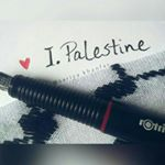 @i.palestine's profile picture on influence.co