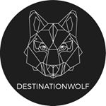 @destinationwolf's profile picture on influence.co