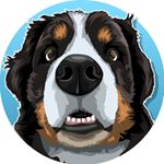 @narabernese's profile picture on influence.co