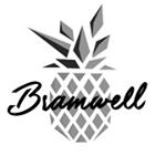 @bramwell.co's profile picture on influence.co