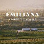 @emilianaorganic's profile picture