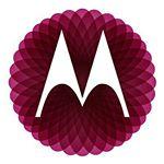 @moto_bra's profile picture