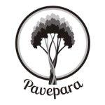 @pavepara's profile picture