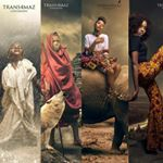 @trans4mazfotography's profile picture on influence.co
