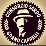 @granocappellisardegna's profile picture on influence.co