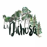 @ladichosa's profile picture on influence.co
