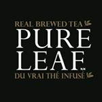 @pureleafcanada's profile picture on influence.co
