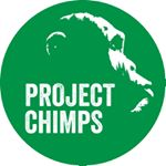 @projectchimps's profile picture
