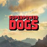 @superpowerdogs's profile picture on influence.co