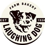 @laughingdogfood's profile picture