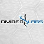 @dividedlabs's profile picture