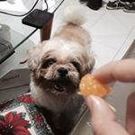 @shopmabuhi's profile picture