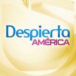 @despiertaamerica's profile picture on influence.co