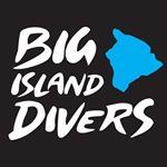 @bigislanddivershawaii's profile picture on influence.co