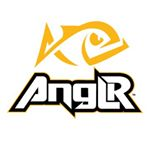 @anglrlabs's profile picture