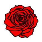@rosegoldla's profile picture