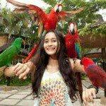 @balibirdpark's profile picture