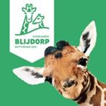@diergaardeblijdorp's profile picture