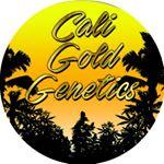 @caligoldgenetics's profile picture on influence.co