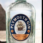 @plymouthgin's profile picture on influence.co
