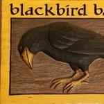 @blackbirdbakerybainbridge's profile picture