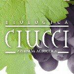@biociucci's profile picture