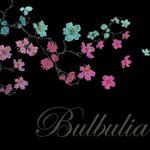 @bulbuliathreads's profile picture
