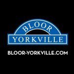 @blooryorkville's profile picture