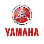 @yamahamotoreu's profile picture