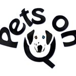 @petsonq's profile picture on influence.co