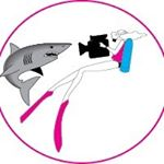@stuartcovesdivebahamas's profile picture