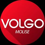 @volgomolise's profile picture on influence.co