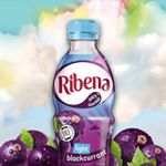 @ribenauk's profile picture on influence.co