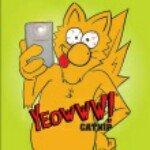 @yeowwwcatnip's profile picture